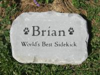 """Smedium"" Pet Stone 10.5-11"" across"