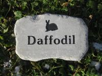 Memorial Stones for Rabbits