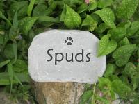 "Pet Grave Markers  6-7"" across"