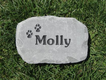 Pet Marker for Molly