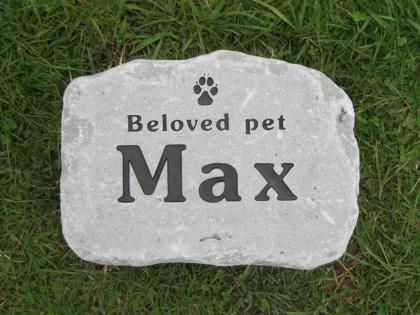 Our Beloved Max