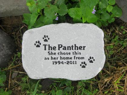 The Panther Stone